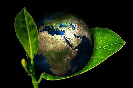 earth-globe-birth-new-arise