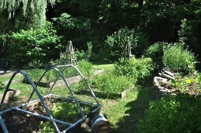 Garden Catch Up