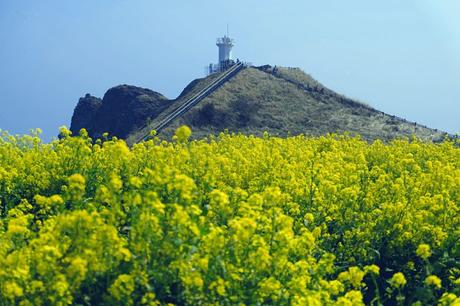 History and Nature in East Jeju
