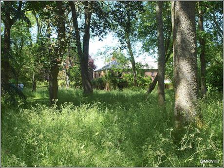 Beechenwood Farm