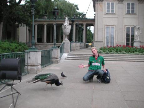 "Big Bird, Hot Dogs, Football and A Lying ""Friend"": The Story of How I Ended Up Living In Poland"