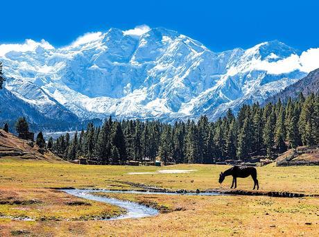 Karakoram 2018: Mike Horn to Attempt Nanga Parbat This Summer