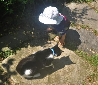 Josie and Corycat and Shadows