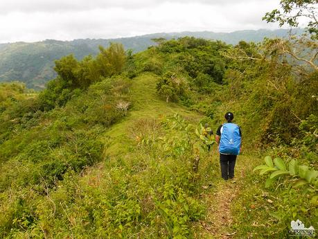 Deuter ACT Trail Raincover