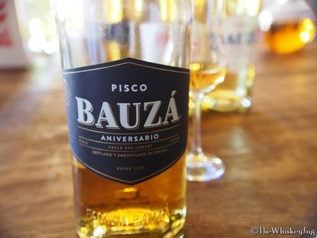 15 Chilean Pisco Facts You Need To Know Right Now - 1
