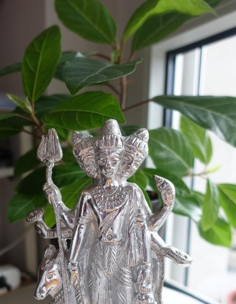 Mystic Audumbara Tree – Miraculous Multiplication