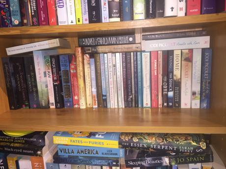 Book Tag – Shelfie by Shelfie #7