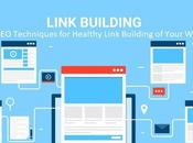 Best Techniques Healthy Link Building Your Website