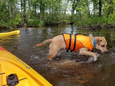 Jake Goes Kayaking!