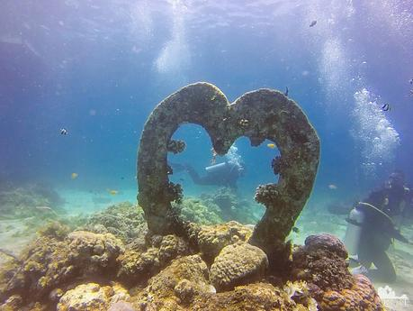 Diving is love