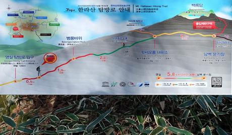 Hiking Hallasan via Yeongsil and Eorimok Trails