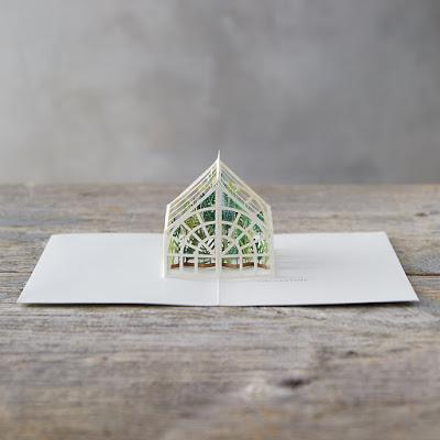 paper fix | pop-up card