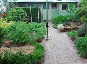 10-Year Rewind Part Evolution Garden 1991–2008