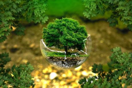 going green environmental protection