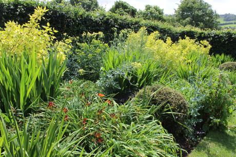 Yeo Valley Organic Garden