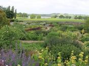Valley Organic Garden