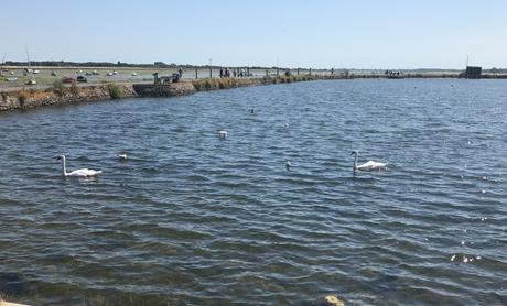 This is Where I Now Live – Emsworth, Hampshire
