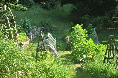 Best Garden Ever!