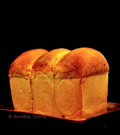 Tearing Toast 流泪吐司 (1)