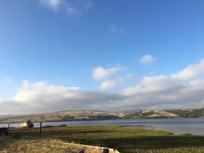 WEEKEND ESCAPE at INVERNESS and POINT REYES NATIONAL SEASHORE, CA, Guest Post by Matt Arnold
