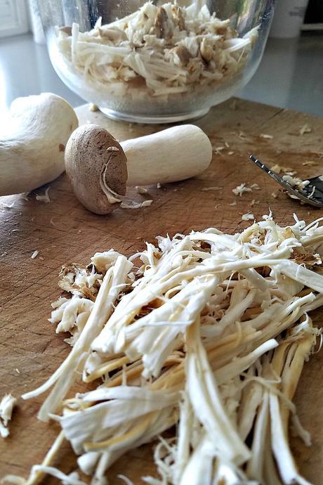 king trumpet mushroom