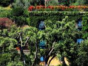 Garden Ideas From Around World Should Steal