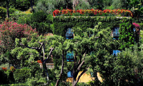 5 Garden Ideas From Around The World You Should Steal