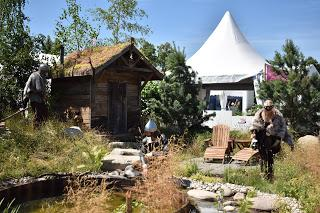 RHS Hampton Court Flower Show part 2 - the Show Gardens and more