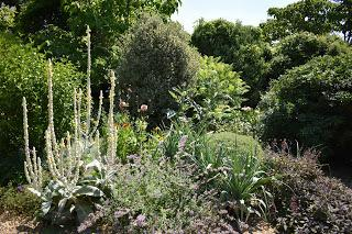 Denmans Garden - visited at last!