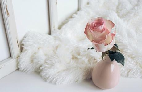 Millennial Pink: Colour Phenomenon for Luxury Feel