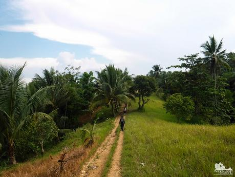 Carabao Highway