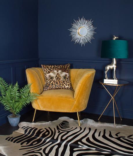 Photography set- Eclectic dark navy living room