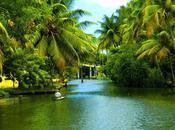 Should Visit Kerala?