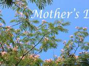 """Things Won't Find """"Beneath Mimosa Tree"""" Reasons Your Mother Will Like"""