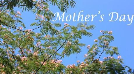 "The Top 10 Things You Won't Find in ""Beneath the Mimosa Tree"" and 8 Reasons Why Your Mother Will Like It"