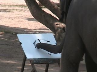 Animal Artistry Gaining in Popularity