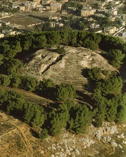 Conflicting Torahs: To Victors Go the Myths