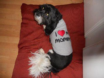 I Heart Mommy Embroidered Dog T-Shirt