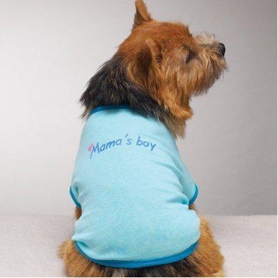 Mama's Boy dog t-shirt by Zack & Zoey