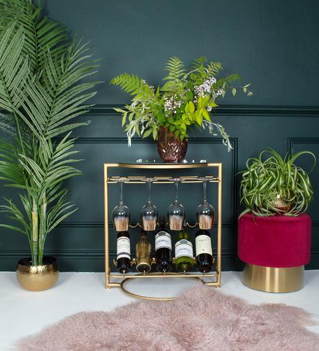interior design advice- house plants