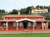 Teanest Nightingale, Kotagiri: Tryst with Nature Tranquility