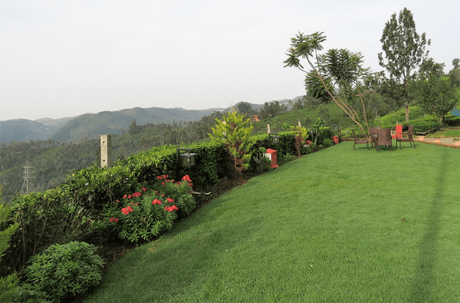 Teanest Nightingale, Kotagiri: a tryst with nature and tranquility