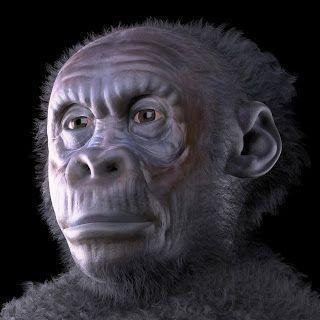 The first Italians – Human evolution news update #12