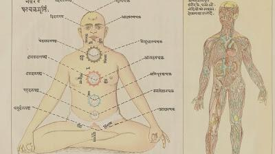 Friday Q&A: Chakras That Are True to Yoga