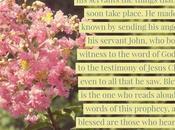 Book Revelation Should Energizing Reviving Christian