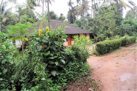 #HolidayDifferently with Sterling: 5 unique experiences with Sterling Wayanad