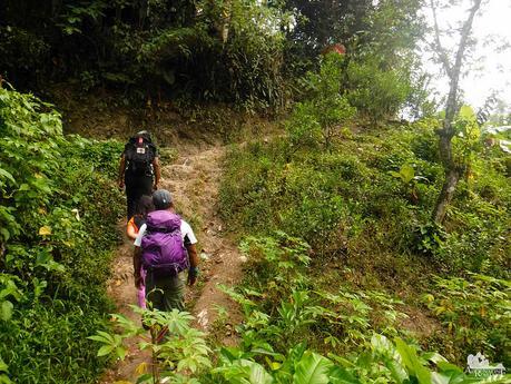Let's start hiking