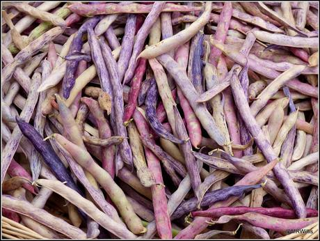 The Shelling Beans are shelled.