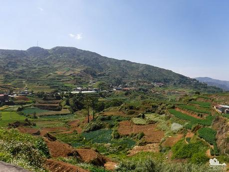 Farms and Terraces in the Halsema Highway