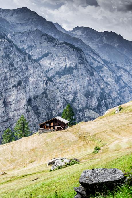 Take a walk on the Swiss wild side